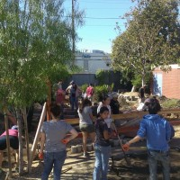 The whole garden project. There were several other large groups in addition to our group from USC ASCE.