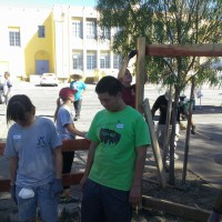 Vine St. Elementary Edible Garden Project