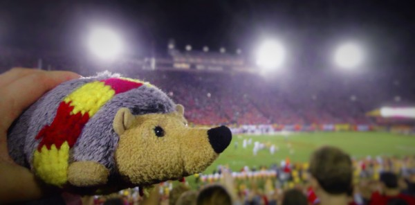 Phil, the ASCE Foundation's Philanthropist Hedgehog watch USC beat Stanford on Saturday. Check out our facebook page for more pics!