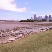 Low tide view towards downtown Panama City