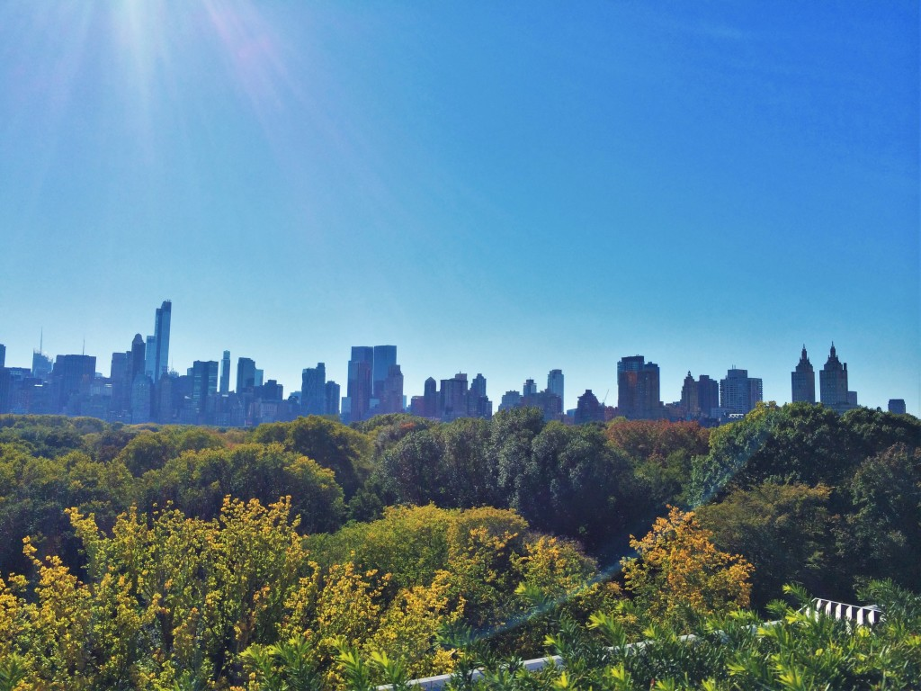 View from the roof of the Metropolitan Museum of Art, over central park.