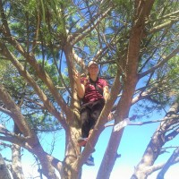 Kelly decided to climb the Wisdom Tree!